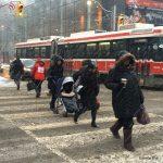 Toronto Slippery Conditions