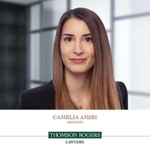 camelia amiri new associate